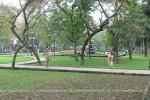 Вьетнамская семья в парке